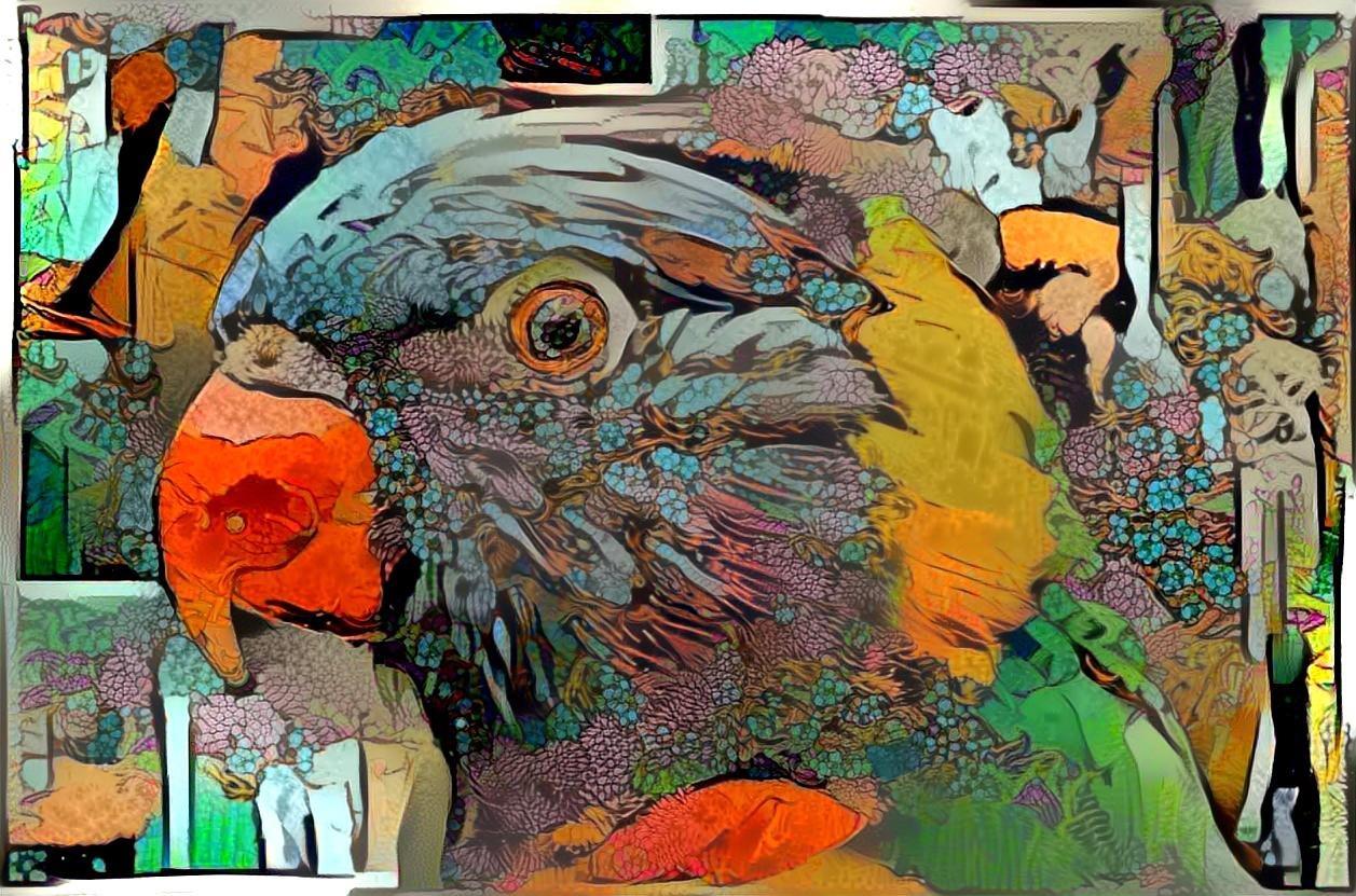Bird_5011