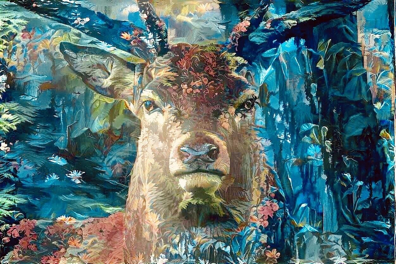 Deer_5043