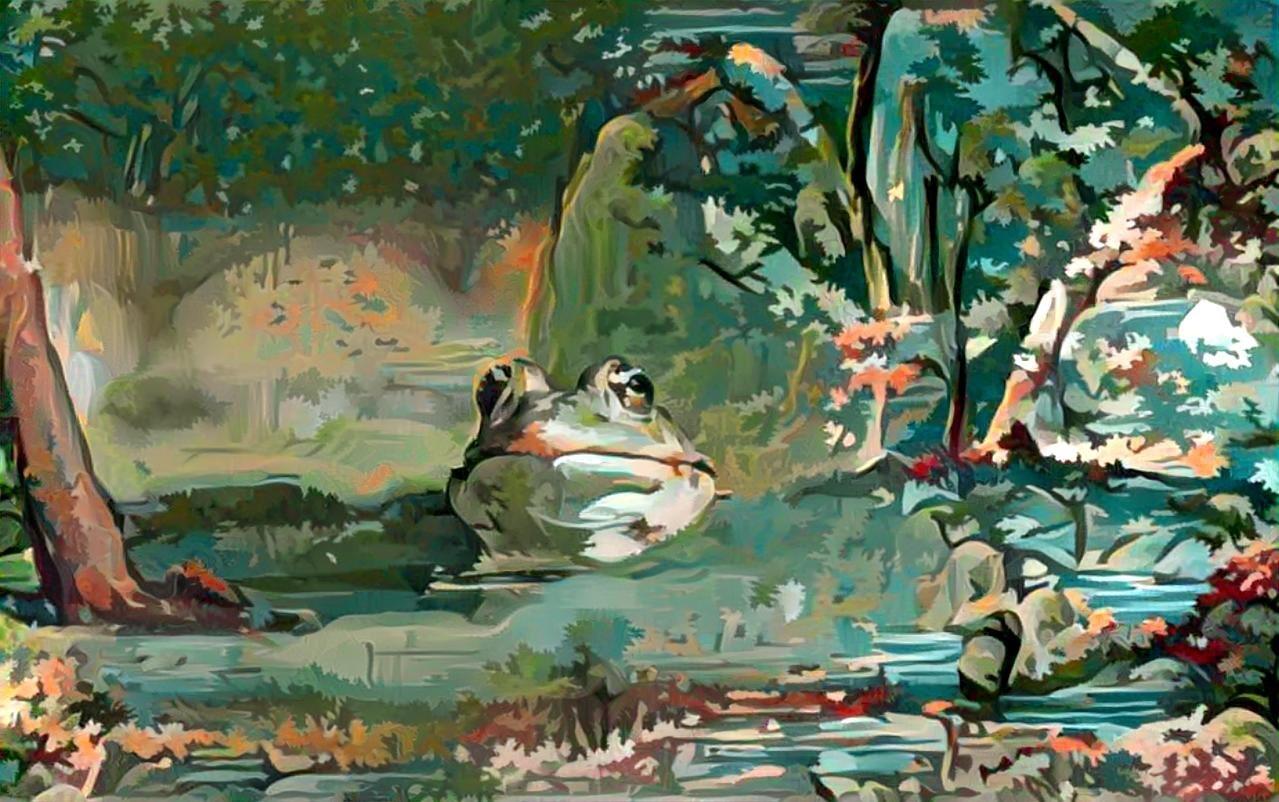 Frog_5082