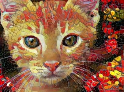 Cat_5085