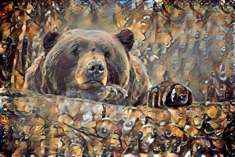 Bear_5116