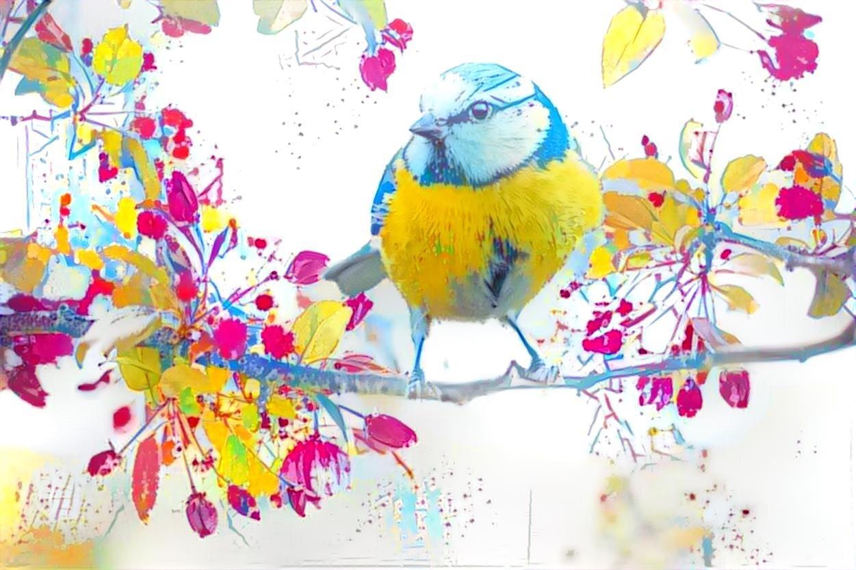 Bird_5120