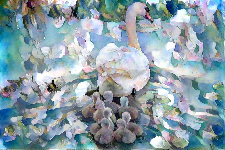 Swan_5134