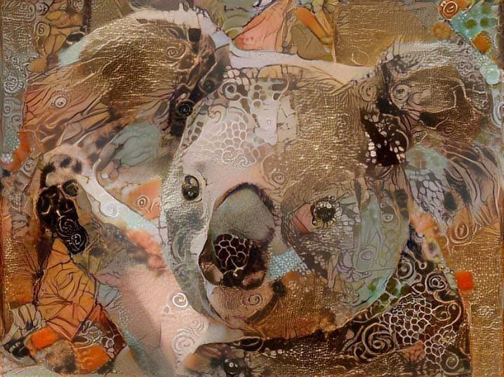 Koala _5162