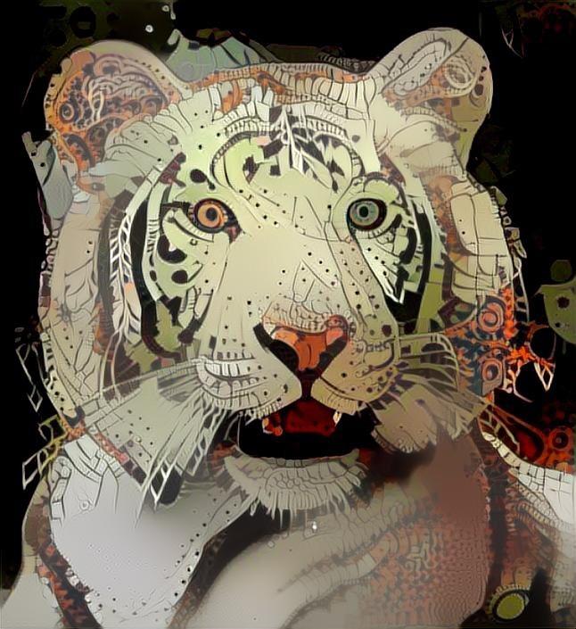 Tiger_5164