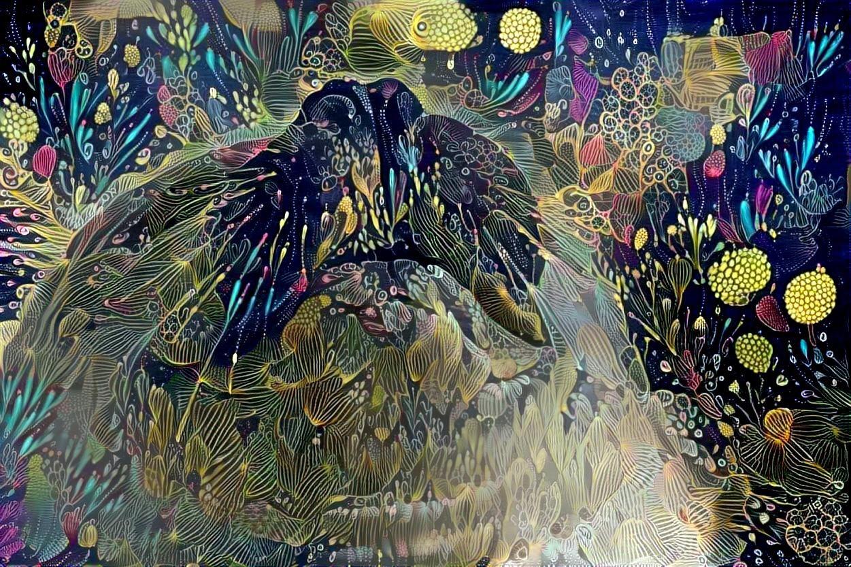 Seal_5170