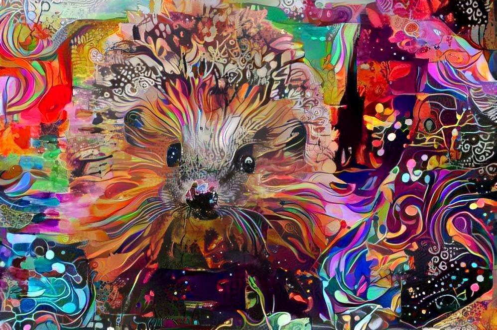 Hedgehog _5195
