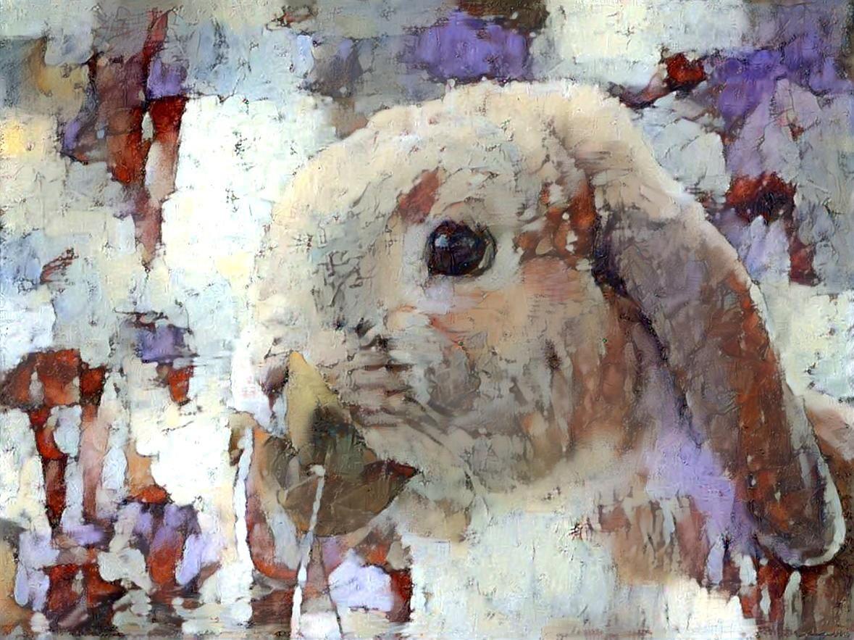 Rabbit_5271