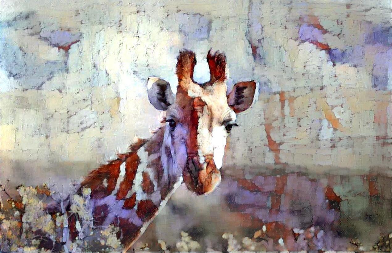 Giraffe _5285