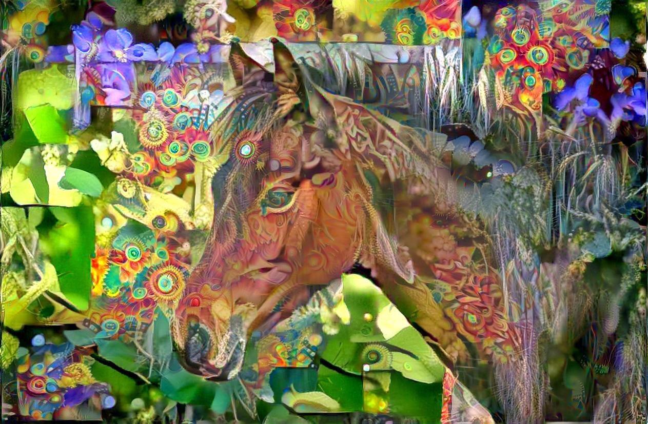 Horse_5305