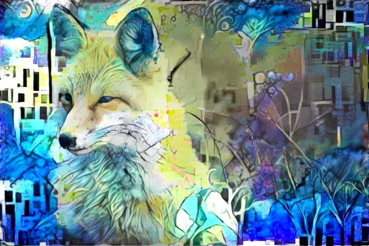 Coyote _5307