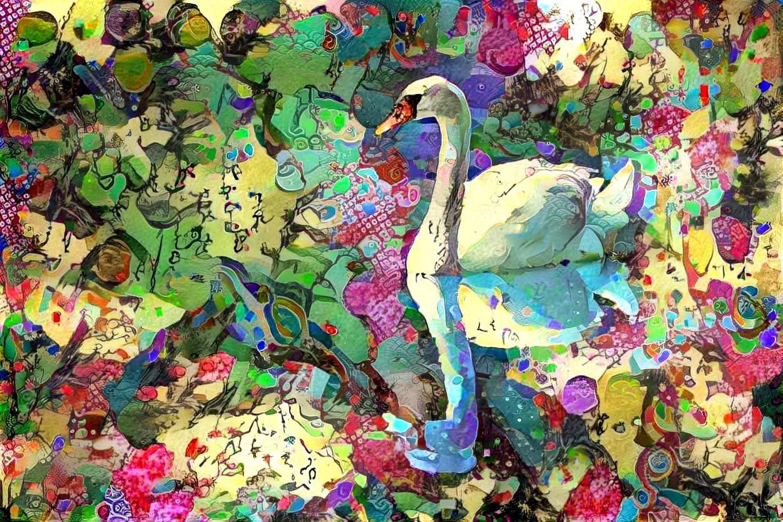 Swan_5310