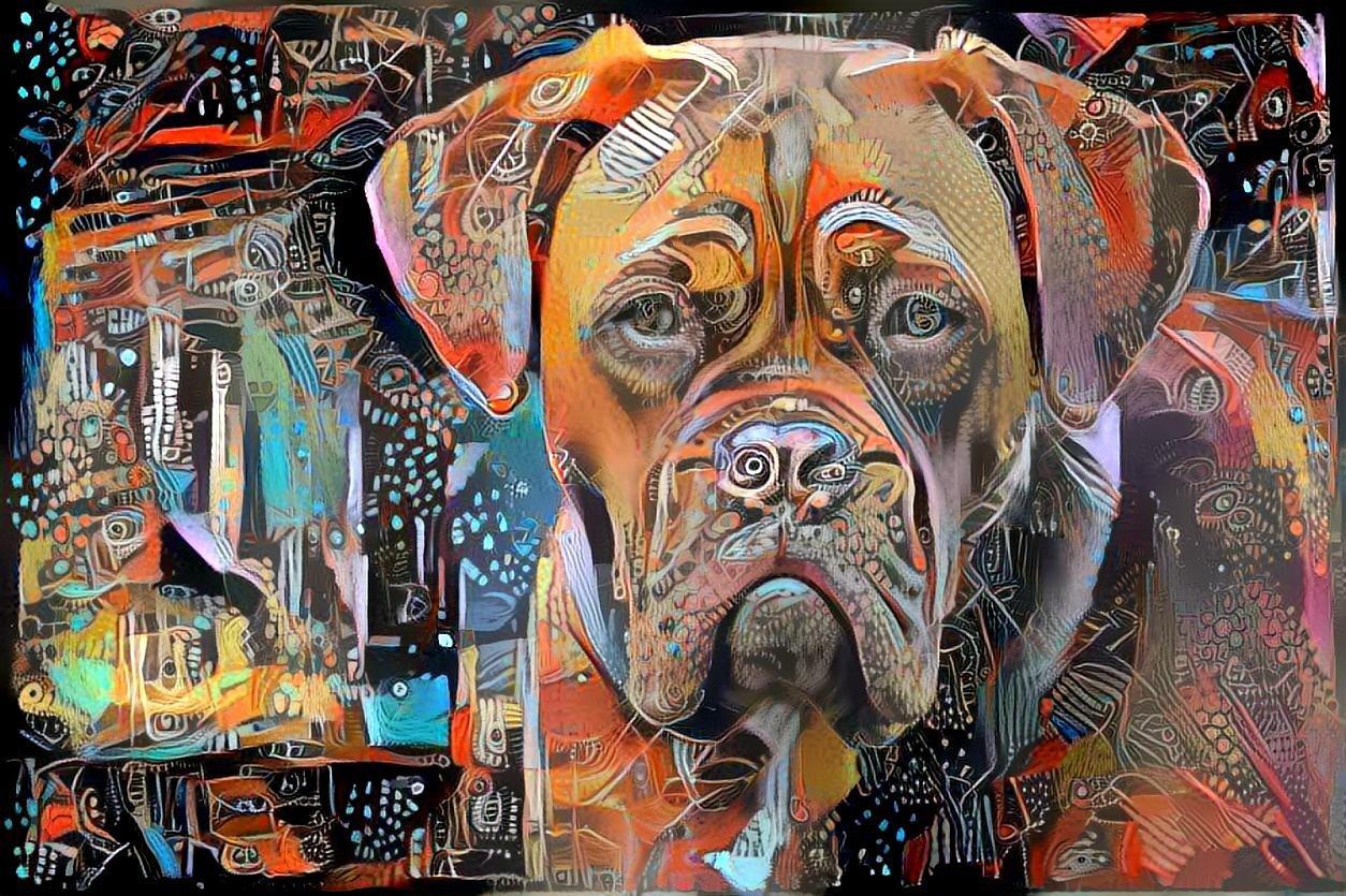 Dog_5425