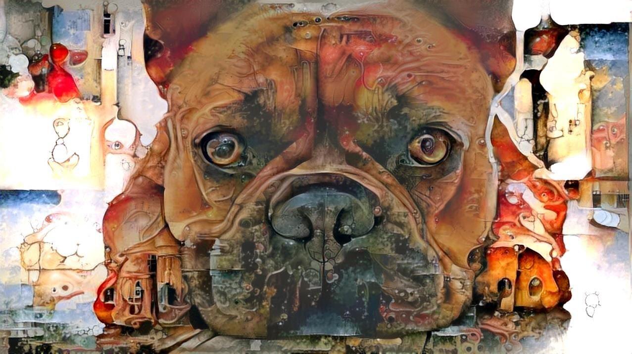 Dog_5465