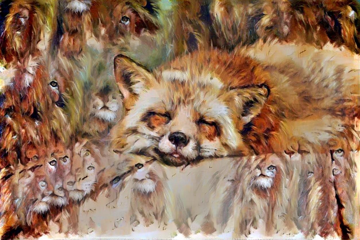 Fox_5467