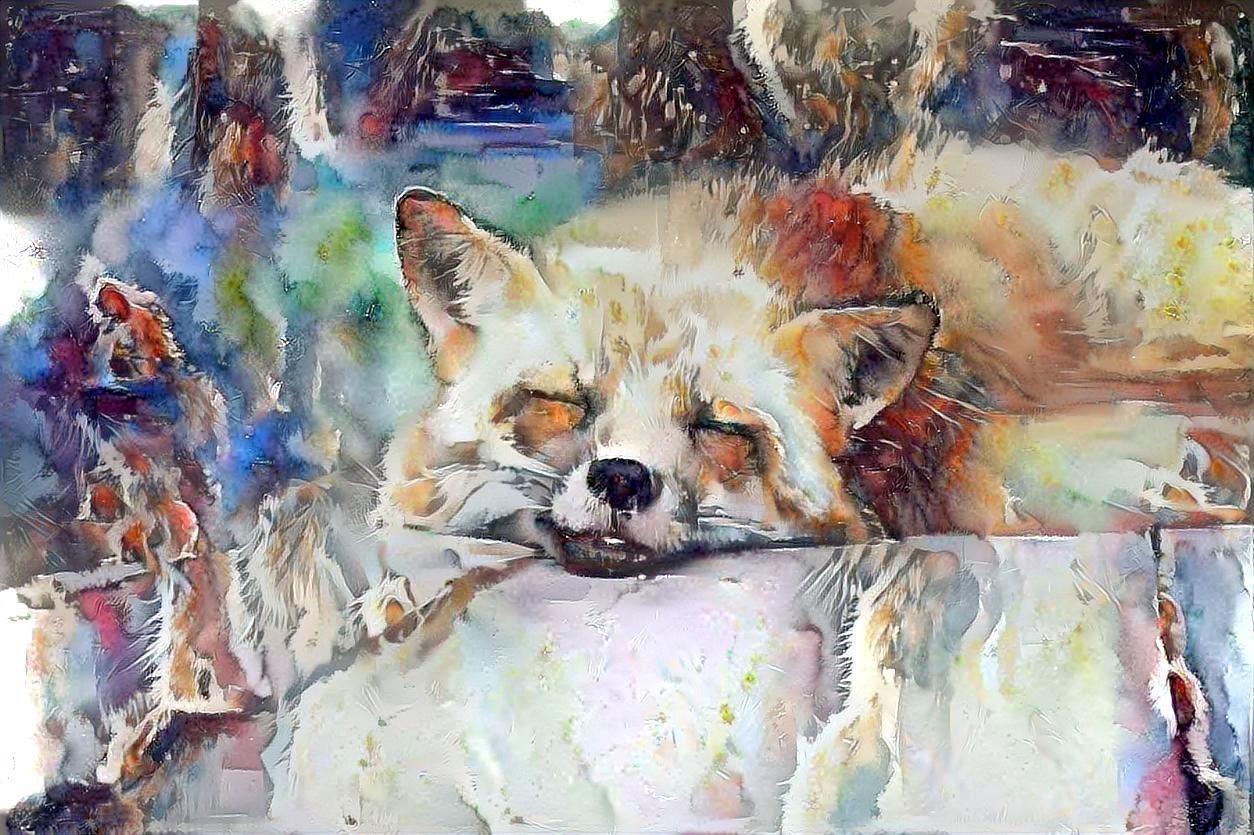 Fox_5468