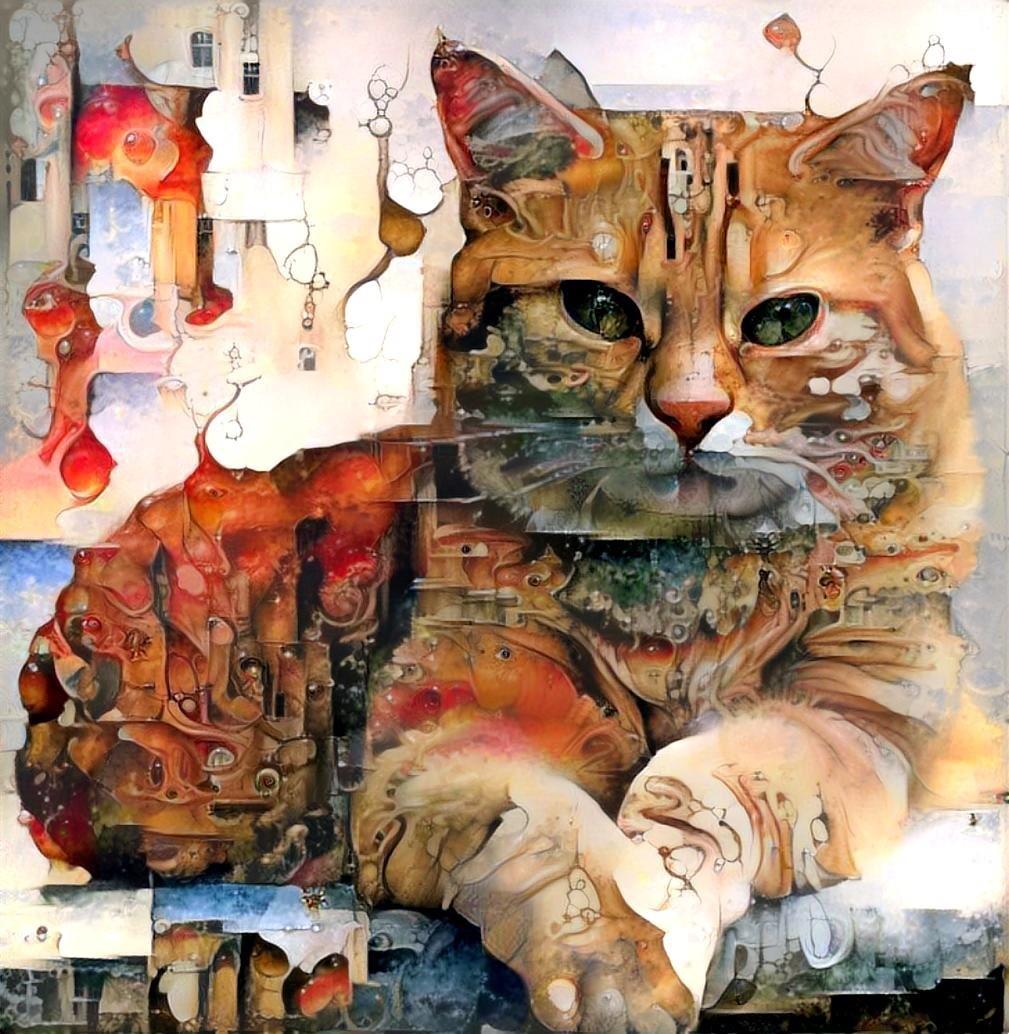 Cat_5469