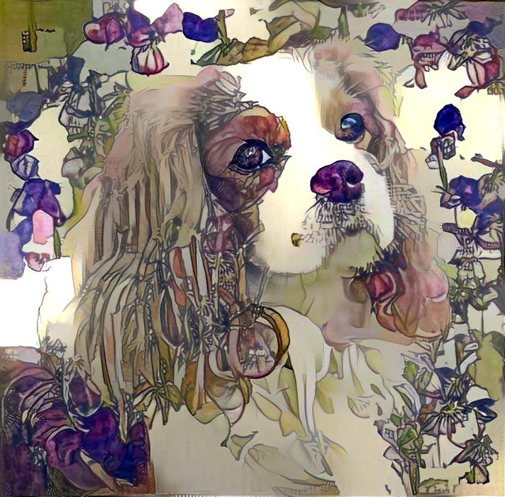 Dog_5485