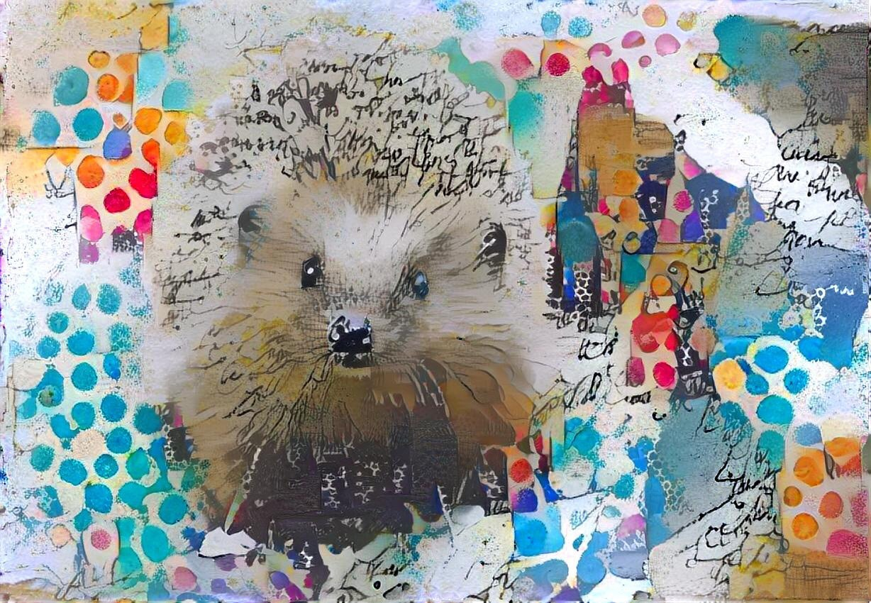 Hedgehog _5539