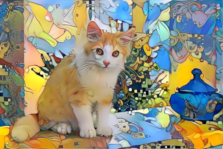 Cat_5564