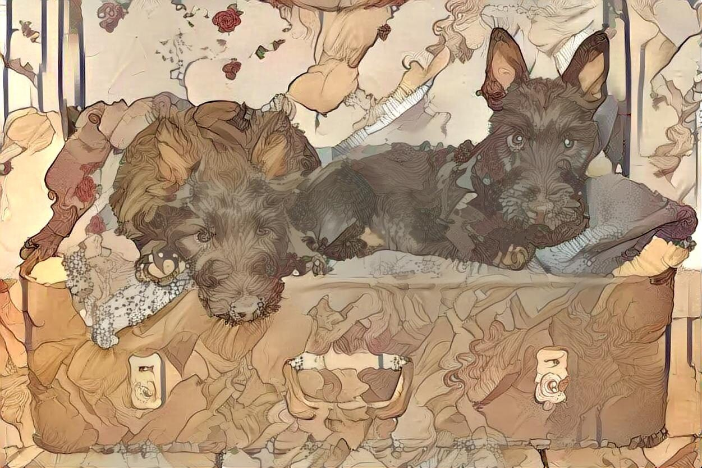 Dog_5593