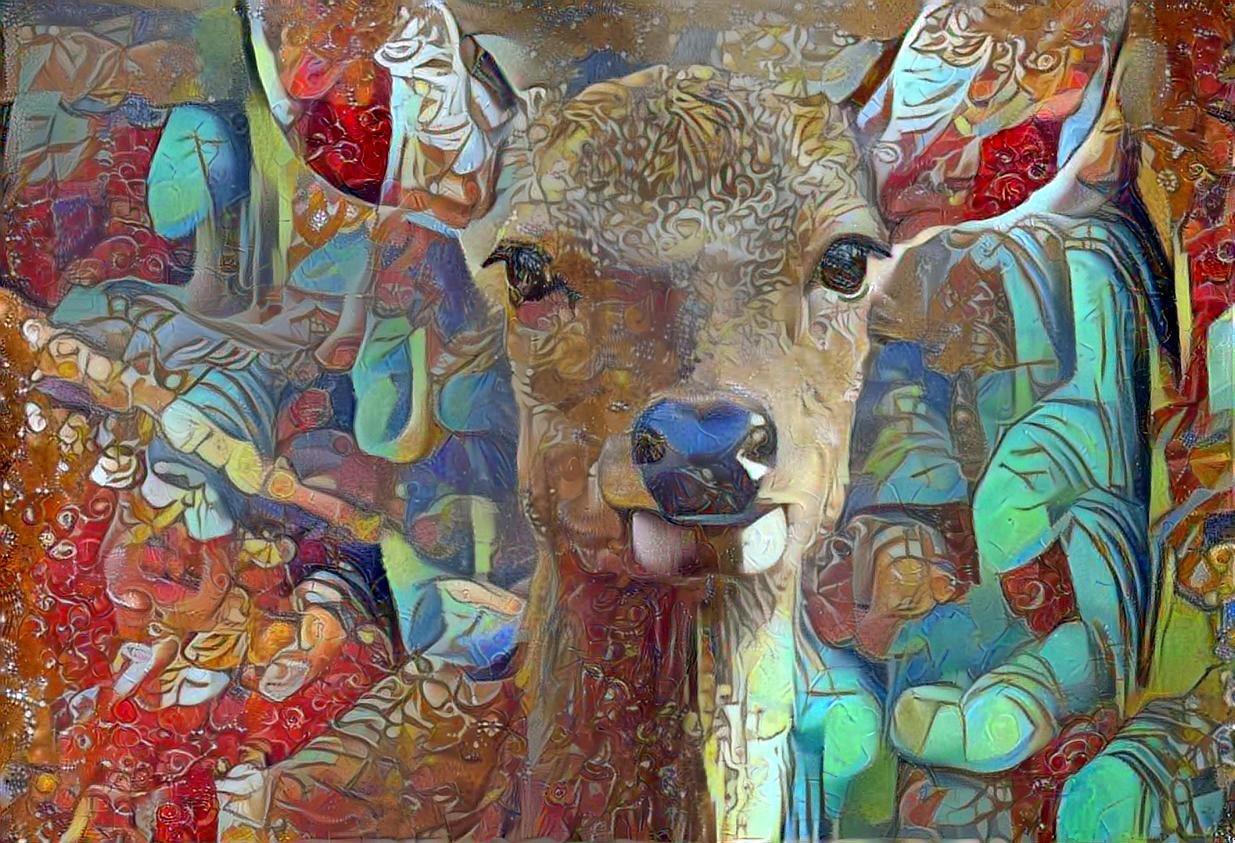 Deer _5674