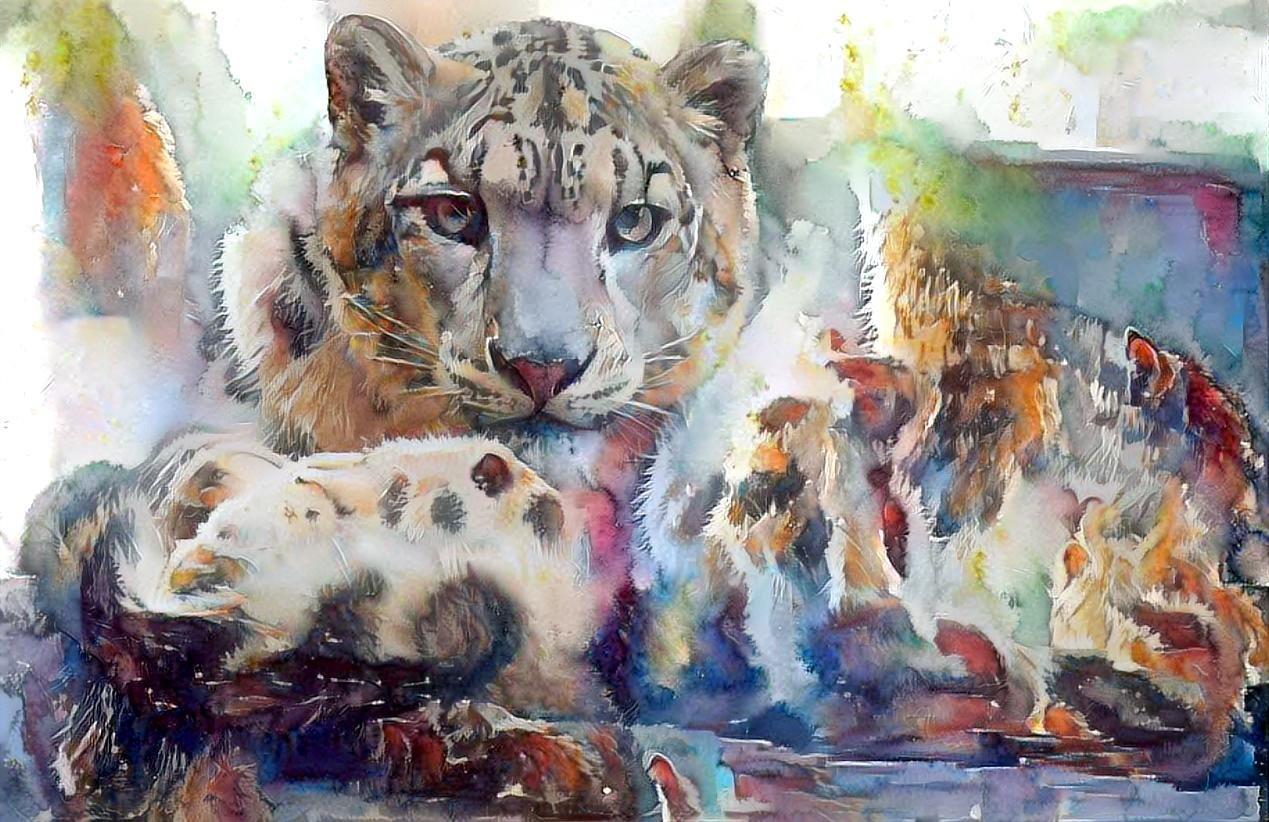 Leopard _5725