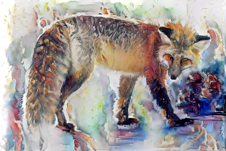 Fox_5730