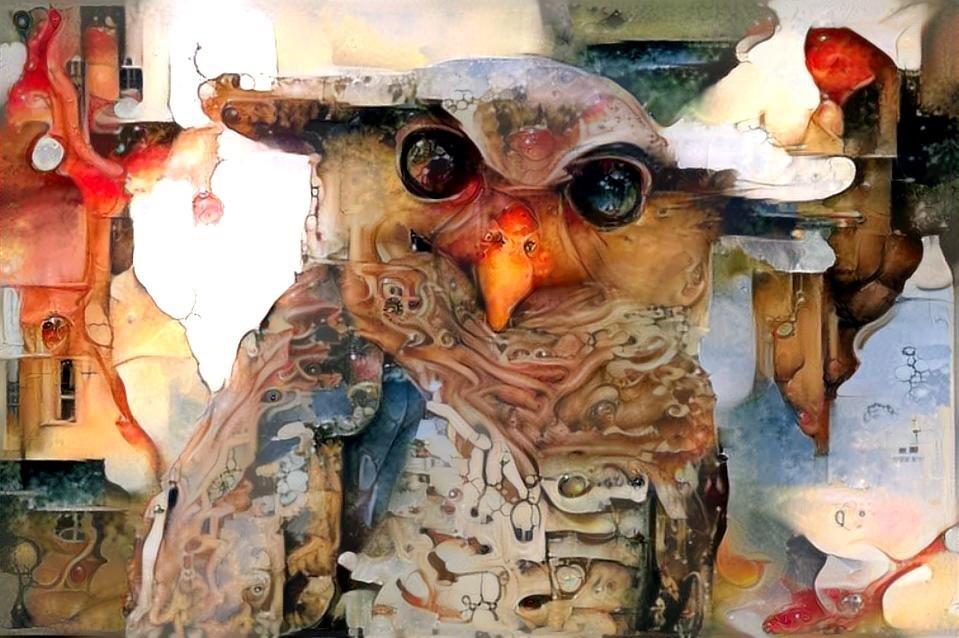 Owl_5769