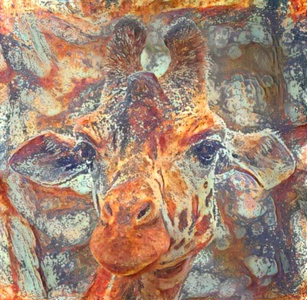 Giraffe _5915