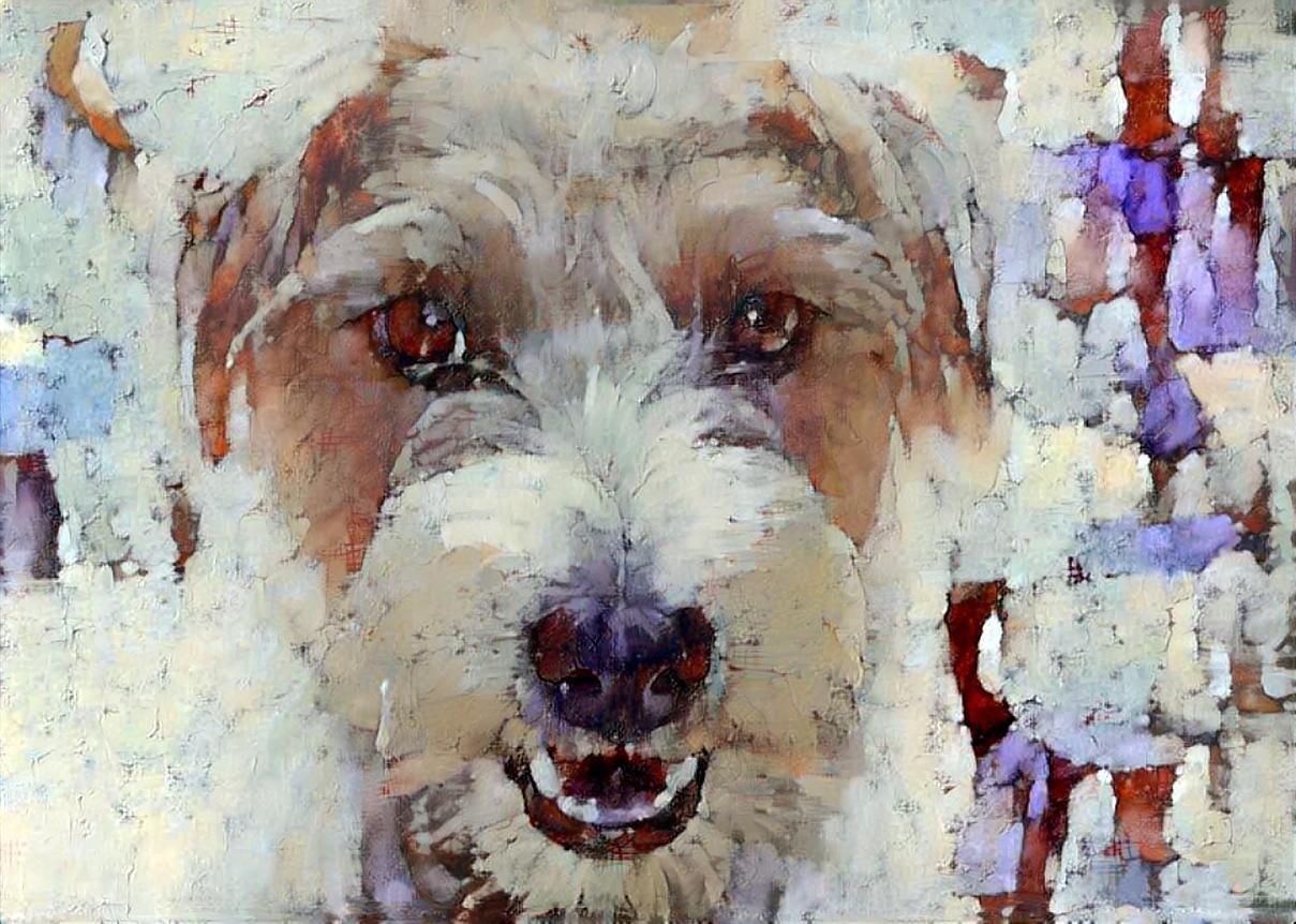 Dog_5946