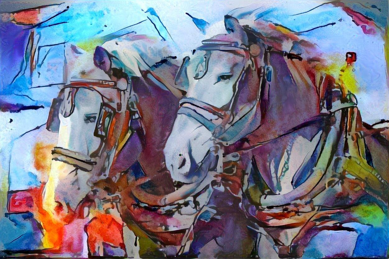 Horse_5965