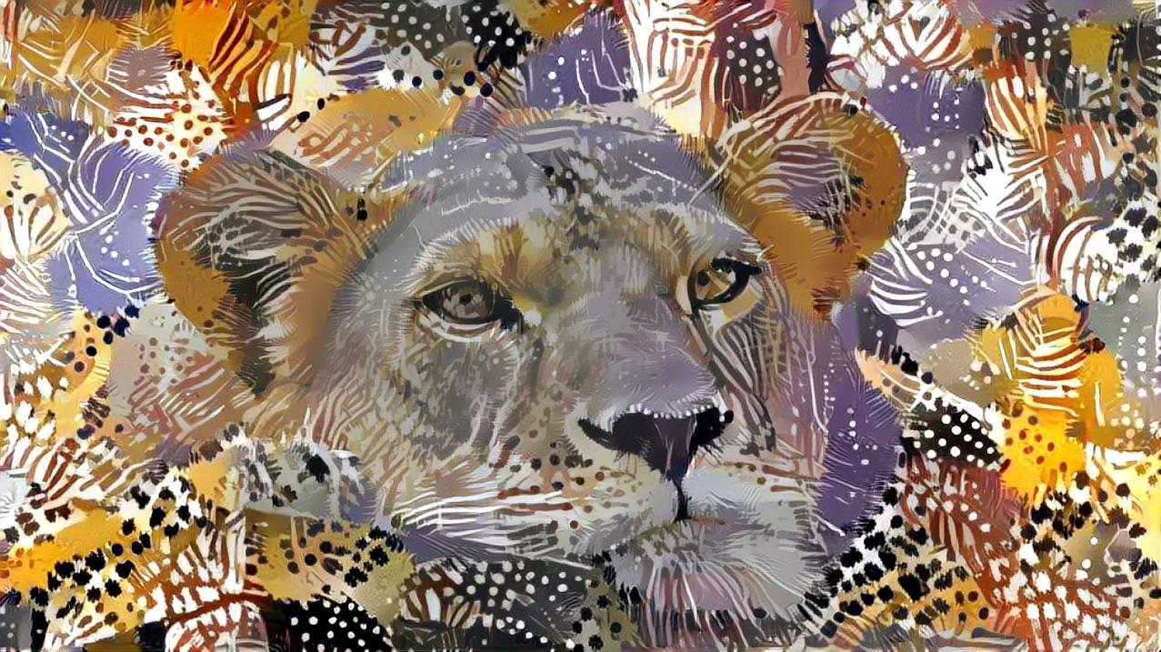 Lion_5998