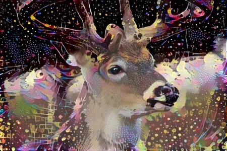 Deer_6003