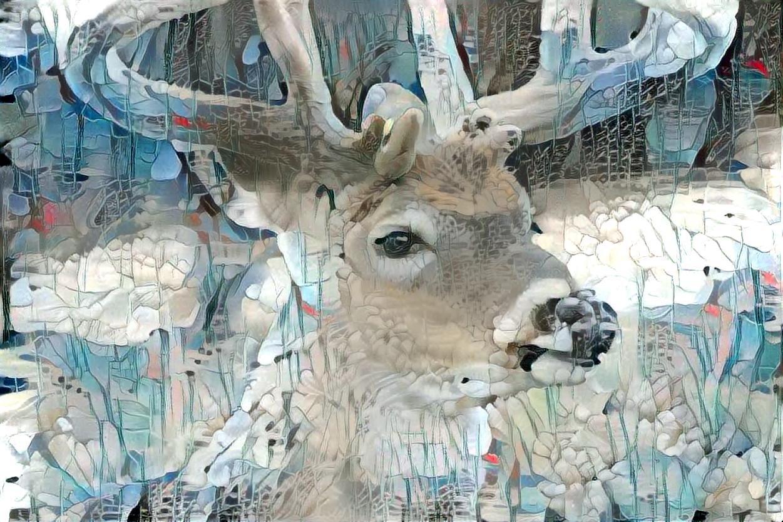 Deer_6020