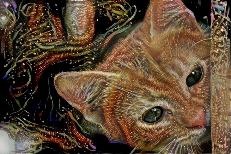Cat_6085