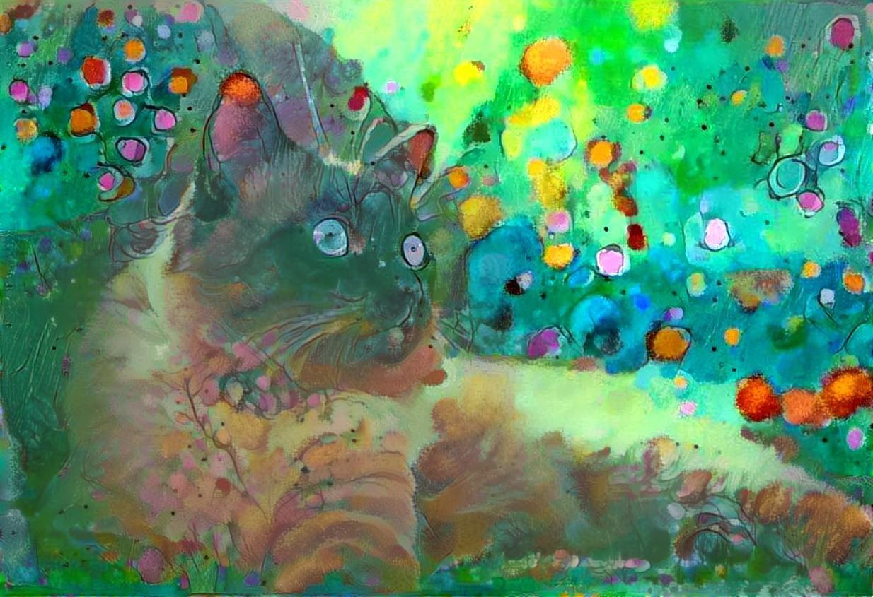 Cat_6097