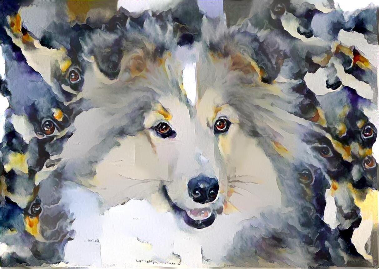 Dog_6132