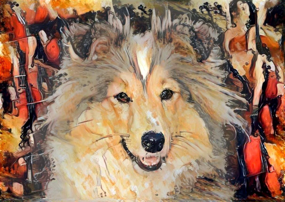 Dog_6139