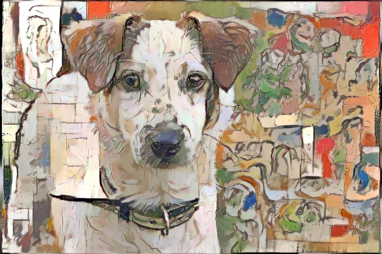 Dog_6141