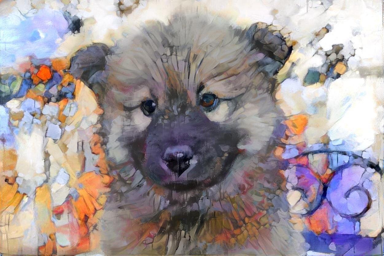 Dog_6143