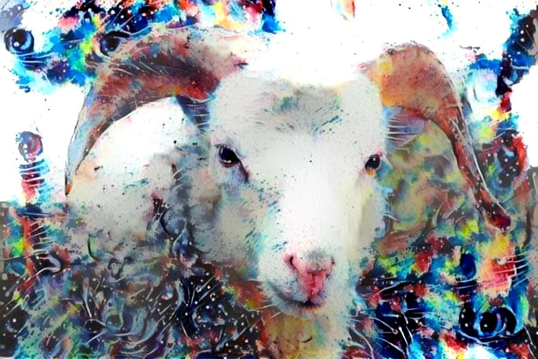 Goat_6207