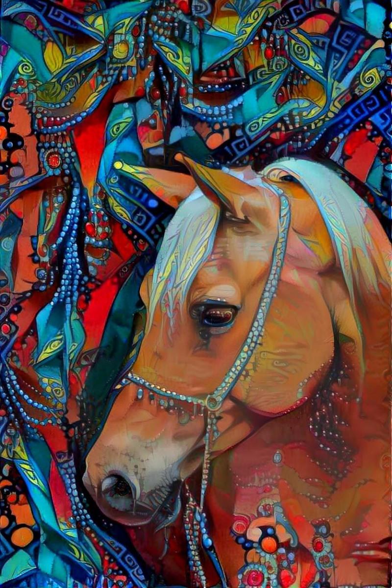 Horse_6262