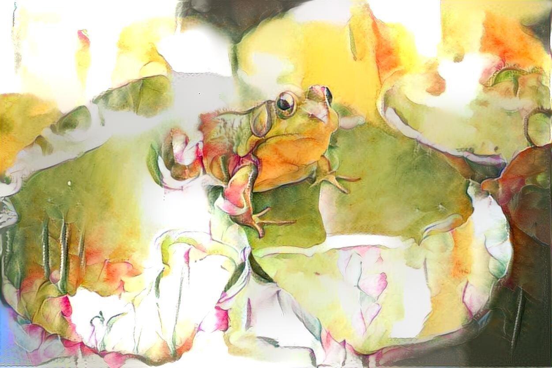 Frog_6283
