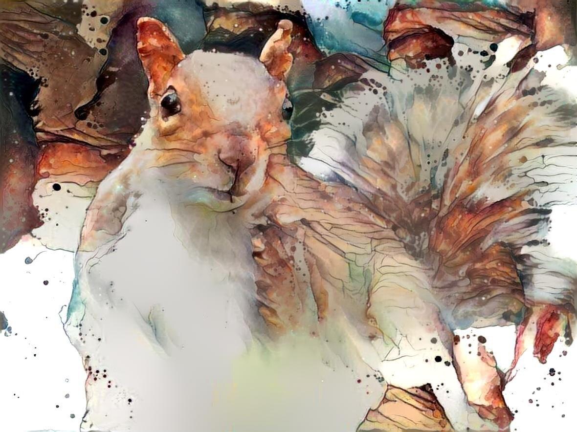 Squirrel _6321