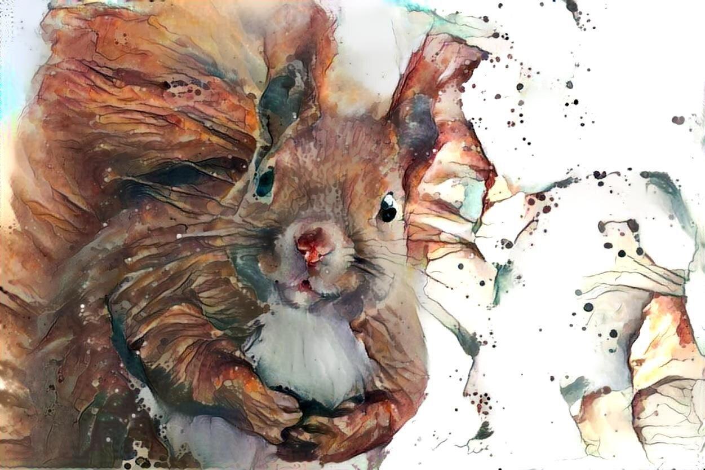 Squirrel _6358