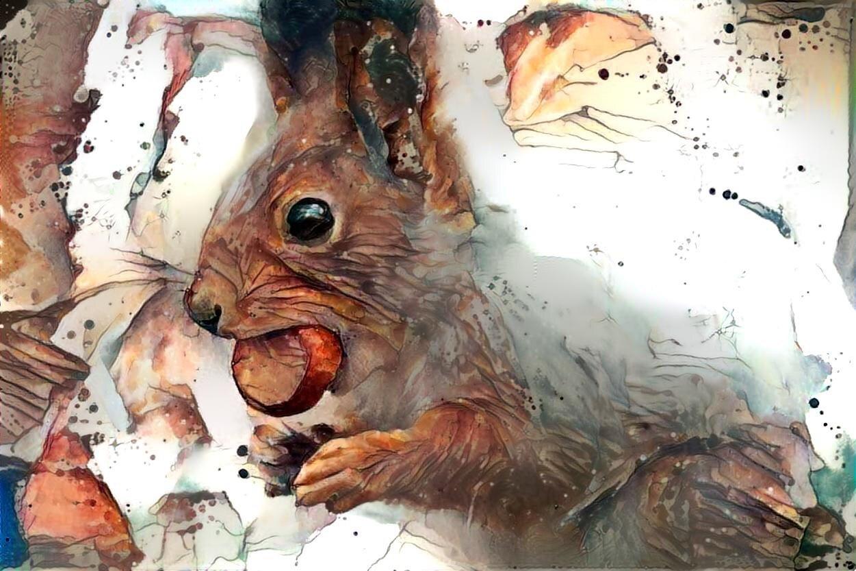 Squirrel _6365