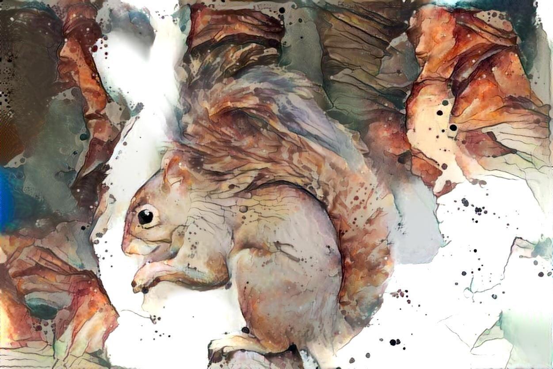 Squirrel _6366