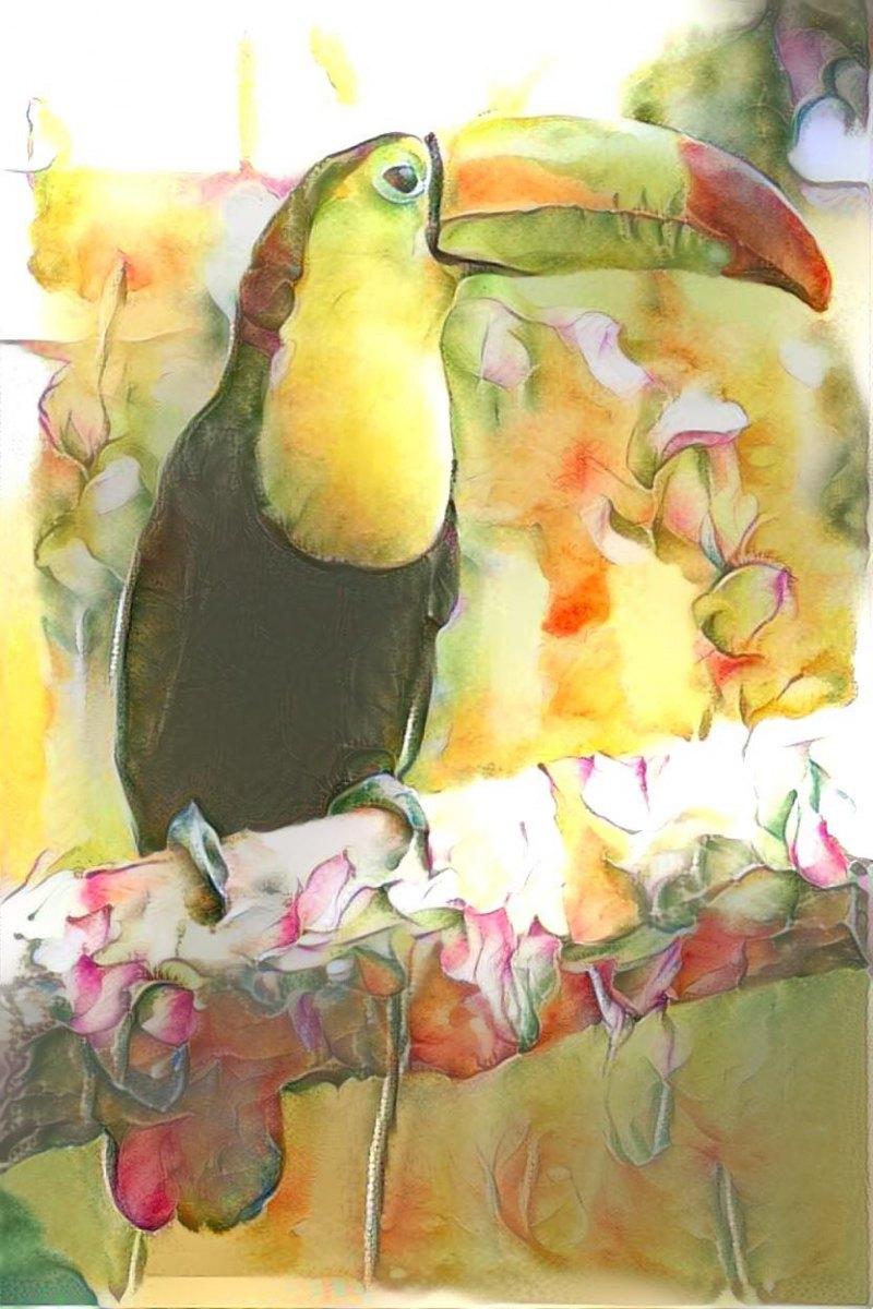 Parrot _6369