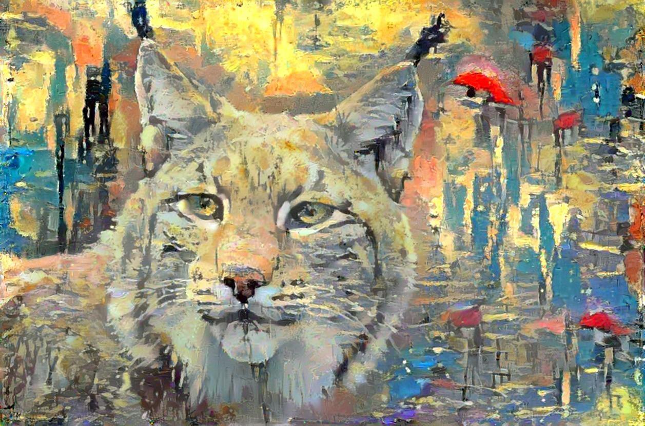 Lynx_6391